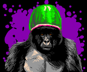 Gorilla with a watermelon on its head
