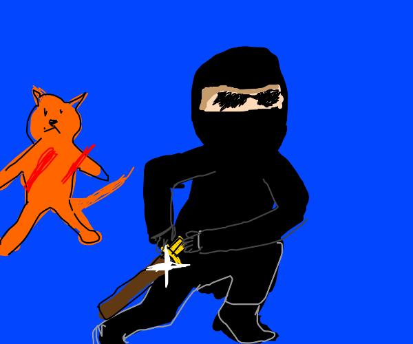 Ninja kills cat
