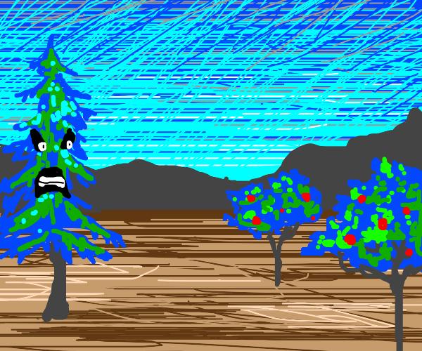 Spruce hates apple trees