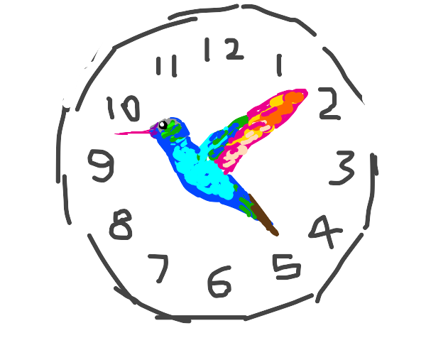 time that flies