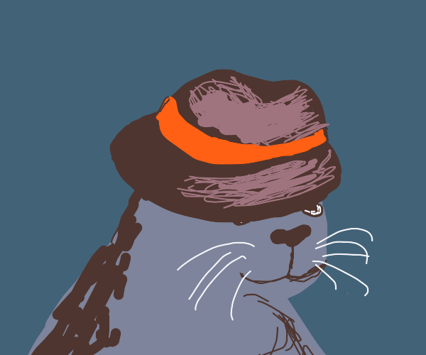 seal with a fedora