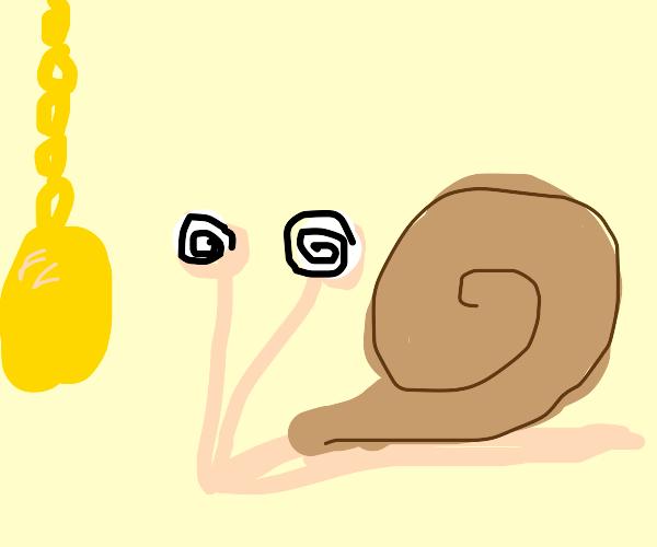 Snail being hypnotized