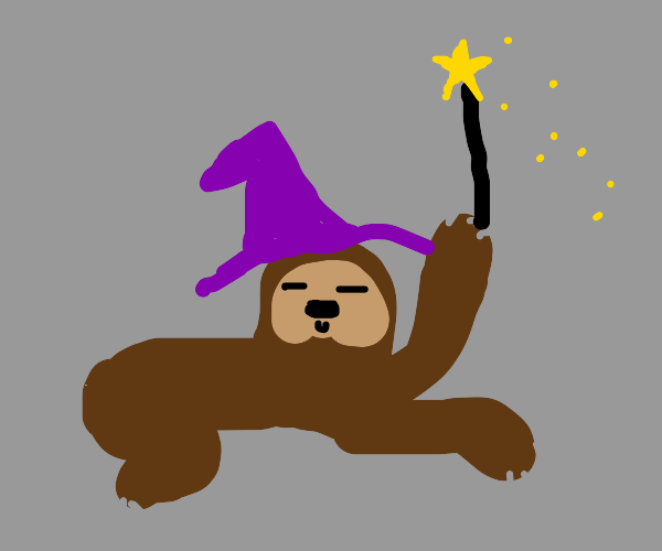 Sloth wizard