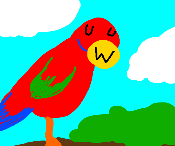 """Scarlet macaw (parrot) with """"UWU"""" expression"""