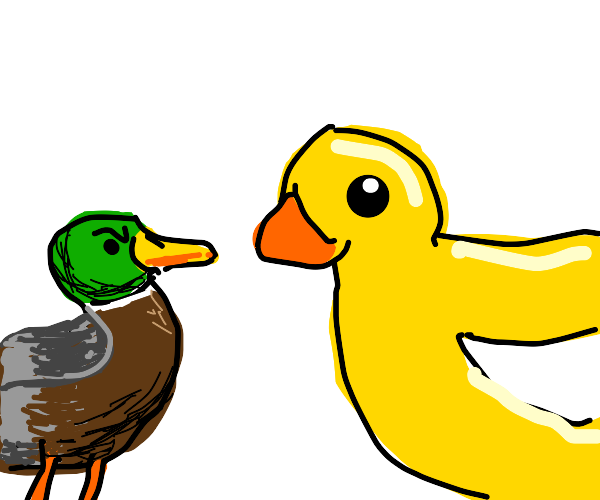 Real duck disapproves of drawception duck