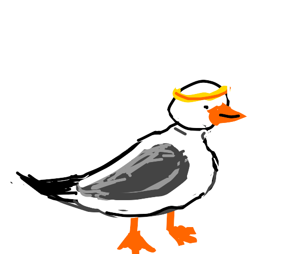 Seagull with headband