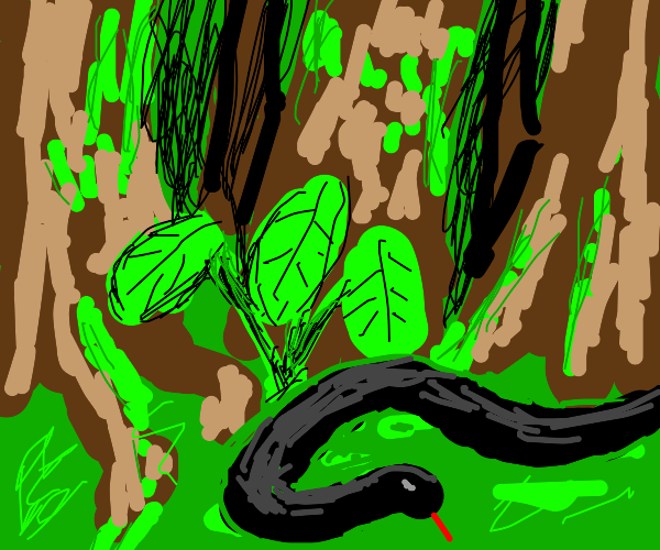A snake in a jungle.
