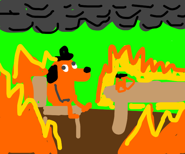 Dog in hell