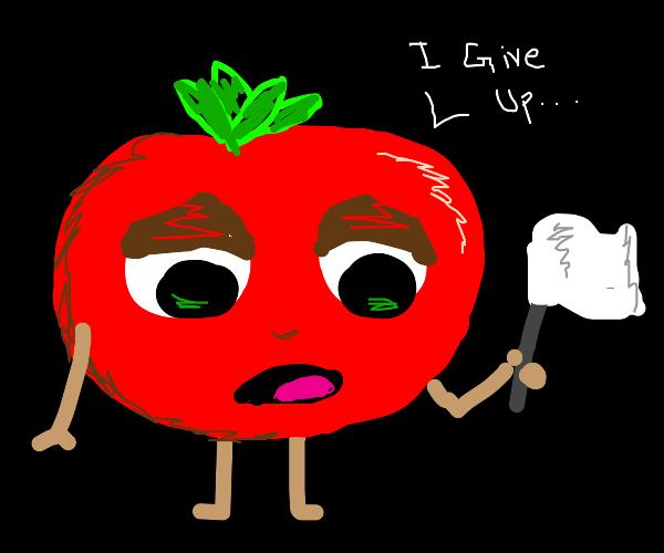Tomato surrenders