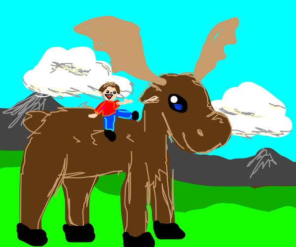 man riding giant moose