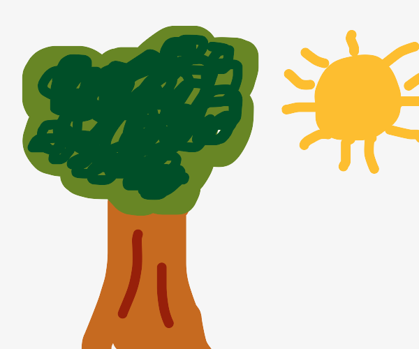a tree and a sun with no background