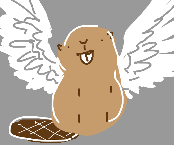 Glorious winged beaver