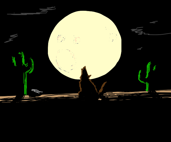 Brown wolf at night