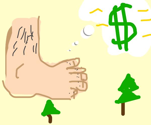 Bigfoot dreams of riches