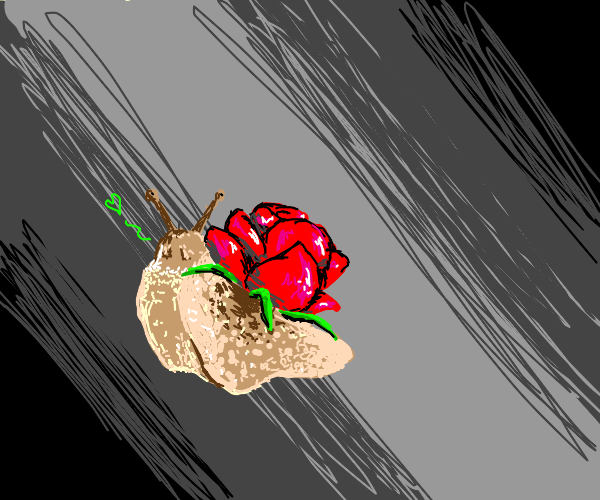 A snail but instead of a shell its a flower