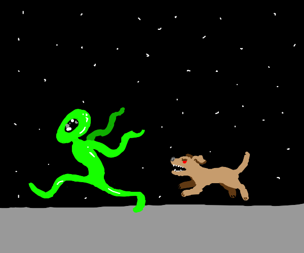 dog chases alien