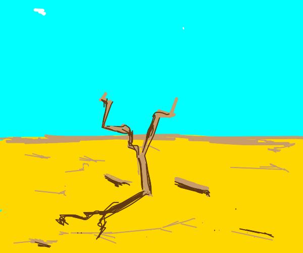 deadbush