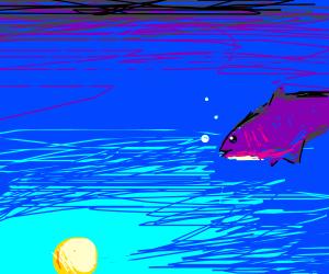 The sun is shining underwater