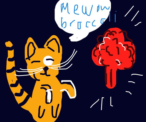 Cat says hi to beloved broccoli