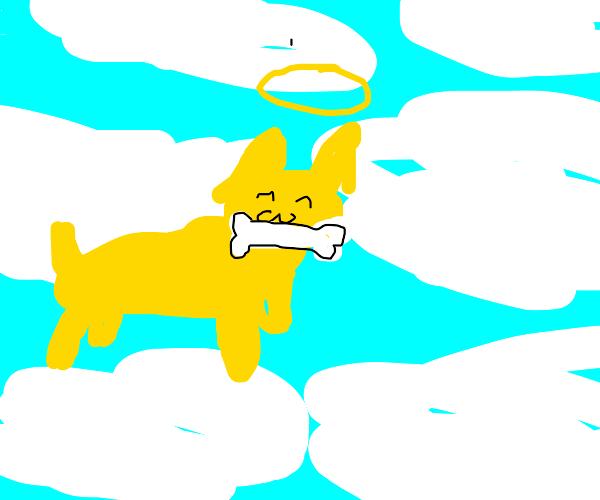 16th Angel, Poochie is a good boy, has bone