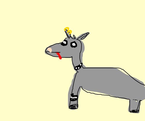 Gothic goat