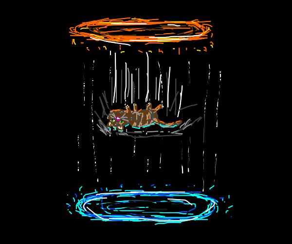 Cat stuck in a Portal loop