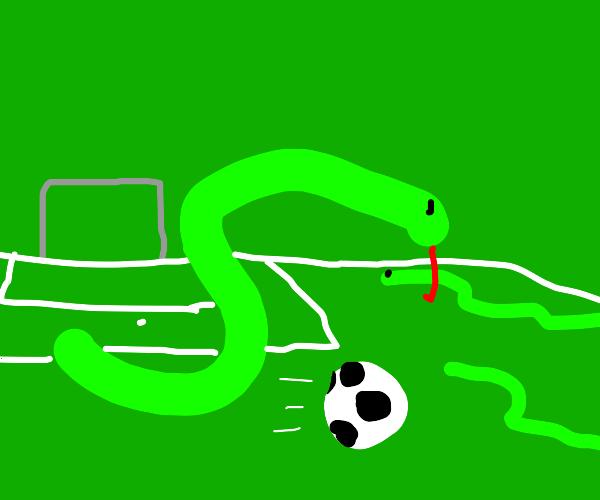 sneks playing football (soccer)