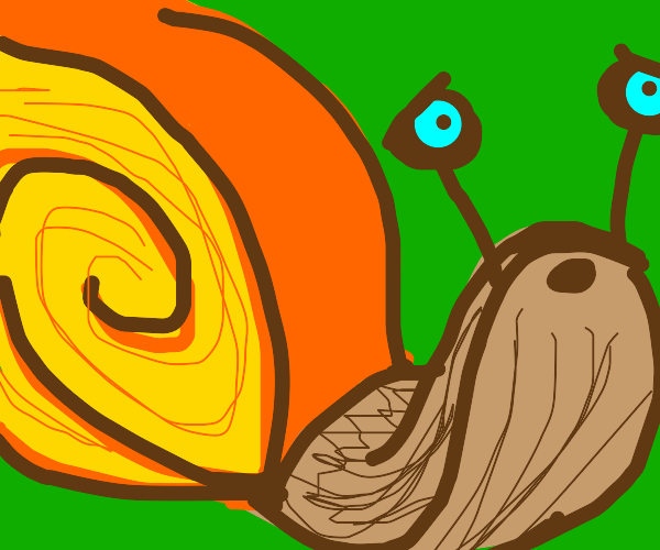 Large snail (uh oh!)