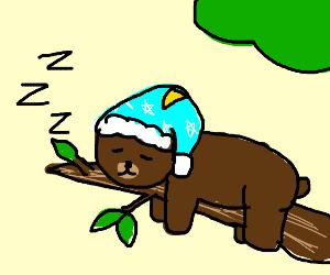 griz from webearbears sleeping on a branch