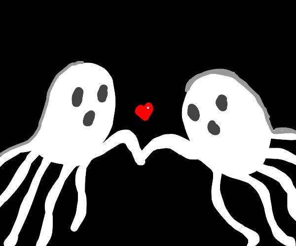 ghost octopus love