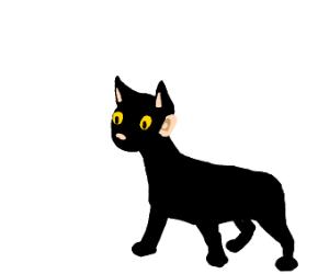 Reverse Cat-girl