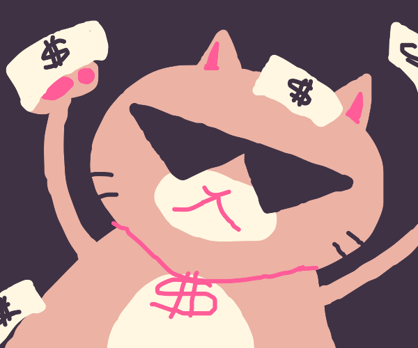 a cool cat has some cash money dawg