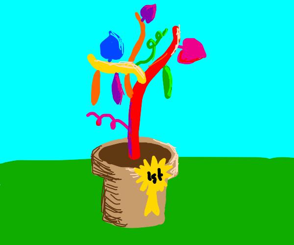 Colorful beanstalk wins 1st prize!