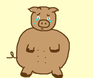 crying fat brown pig