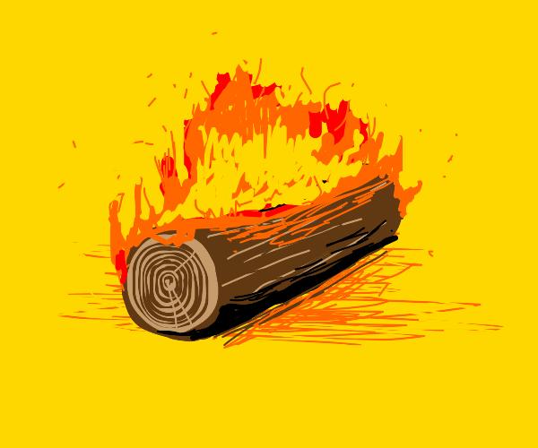 piece of wood burning