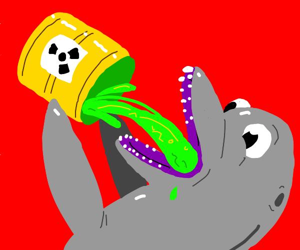 Dolphin drinks radioactive waste