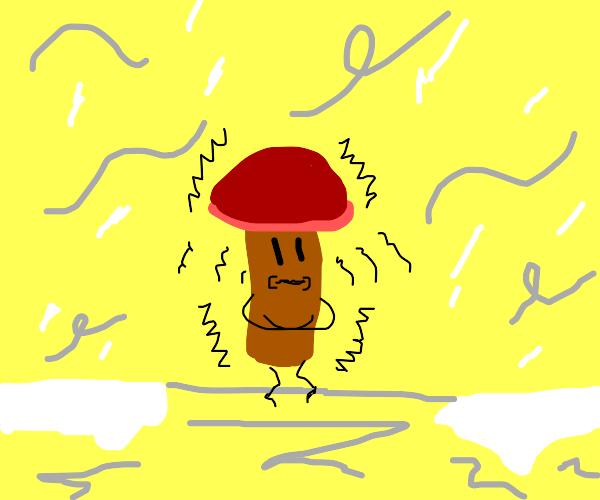 Mushroom shaking
