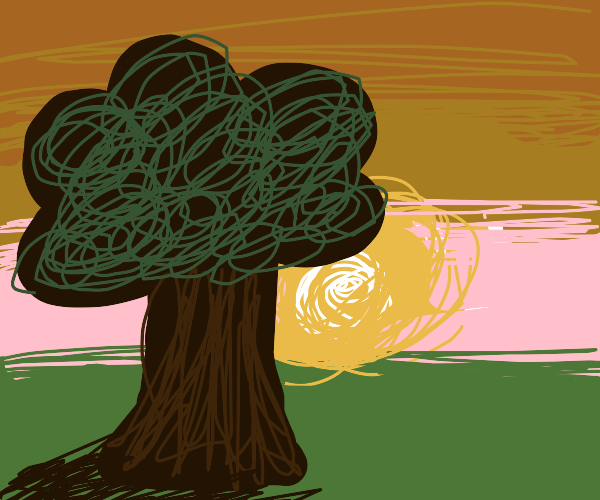A lonesome, large tree during a sunset