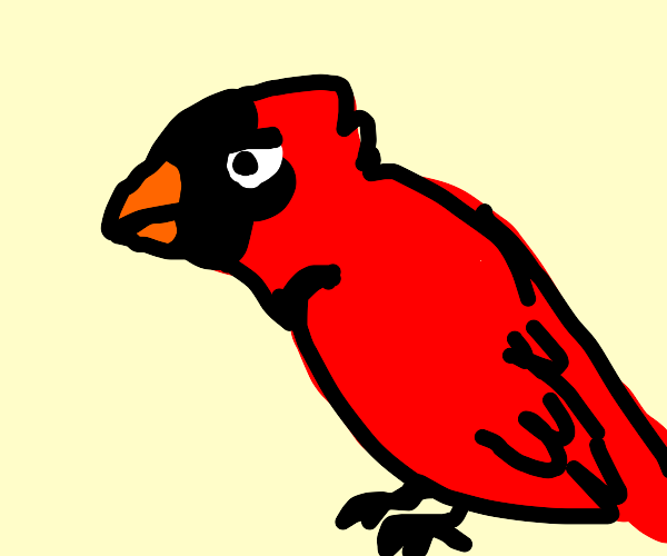 Cardinal (What kind? Bird? Sports? Clergy?)
