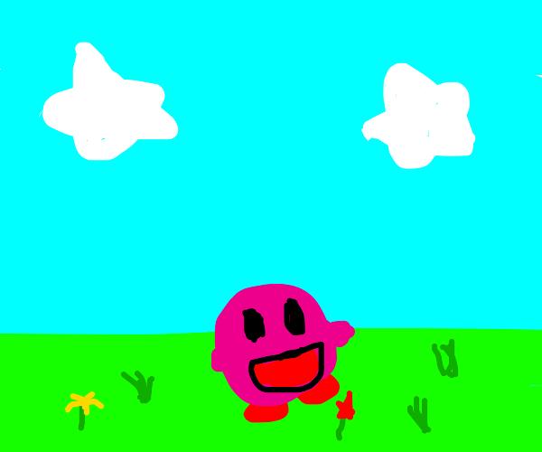 kirby in field