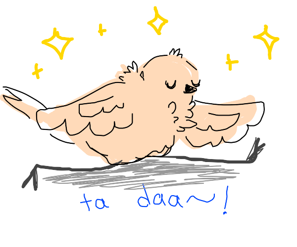 fluffy off-white birb does the splits