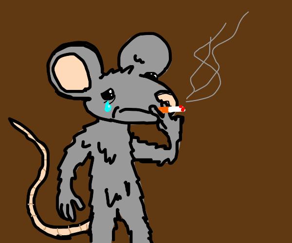 Humanoid depressed mouse