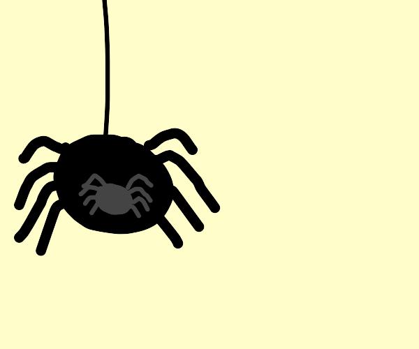 Spiderception