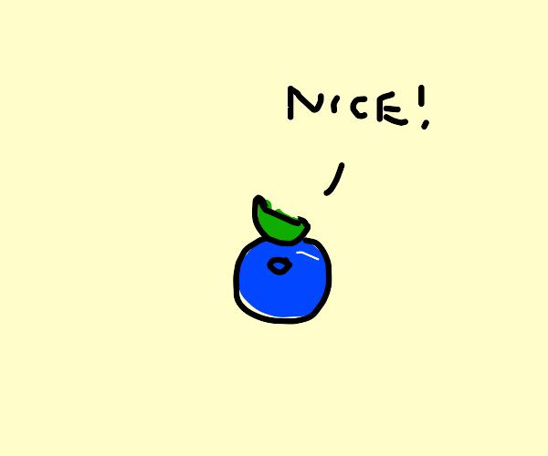 a very nice blueberry
