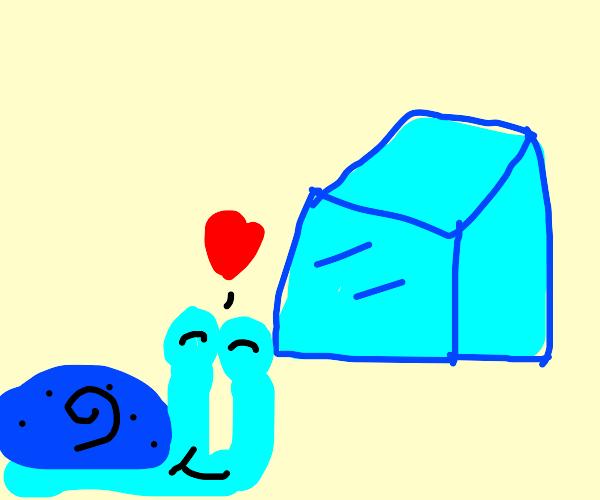 Blue Snail Loves Icecube