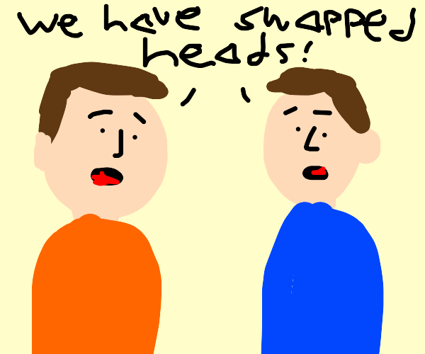 Oh No! Our heads are swapped!