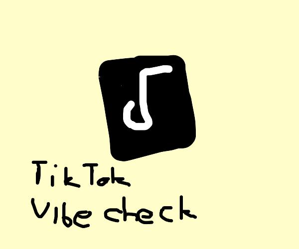 TikTok gets vibe checked
