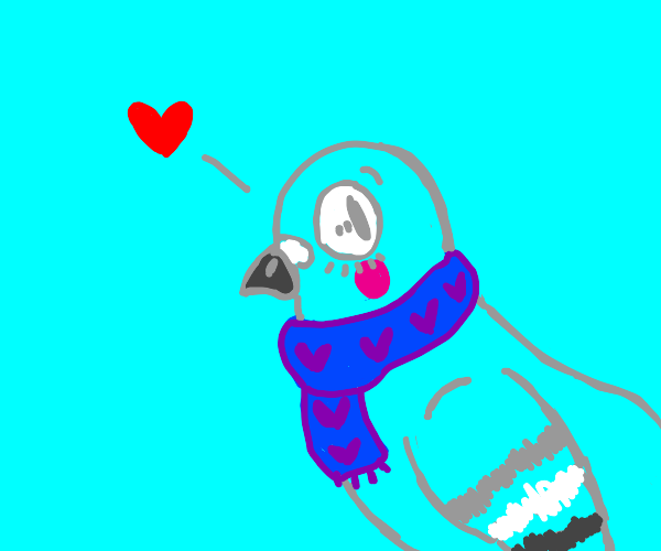 cute bird with a scarf