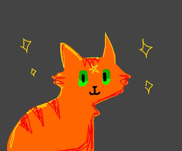 A magical cat named Firestar
