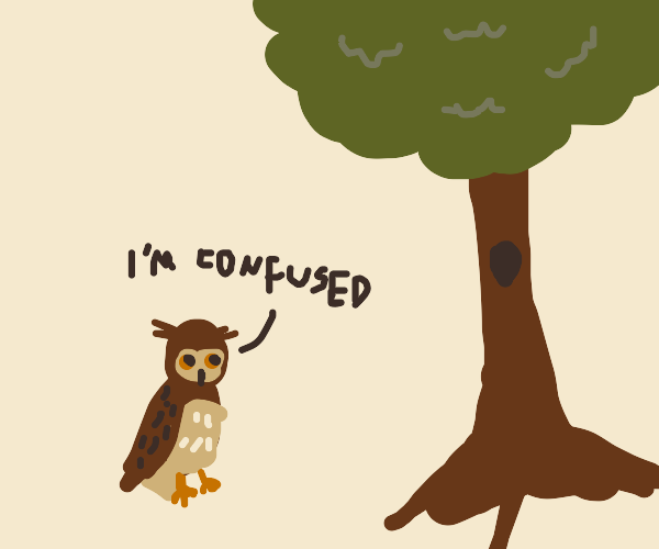 """an owl saying """"I am confused"""" to the tree"""
